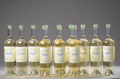 12 bouteilles BORDEAUX