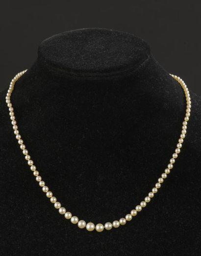 Collier un rang de cent-huit perles fines...