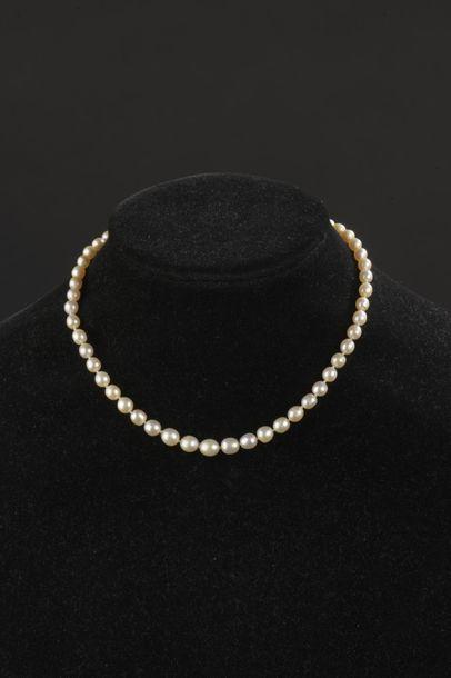 Collier de cinquante-trois perles fines en...