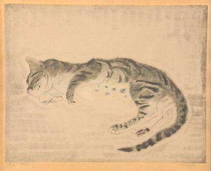 Léonard FOUJITA (1886 - 1968). Chaton endormi,...