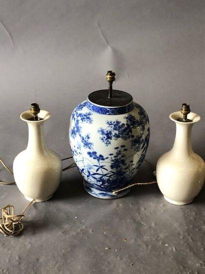 Lot : Potiche en porcelaine bleu et blanc...