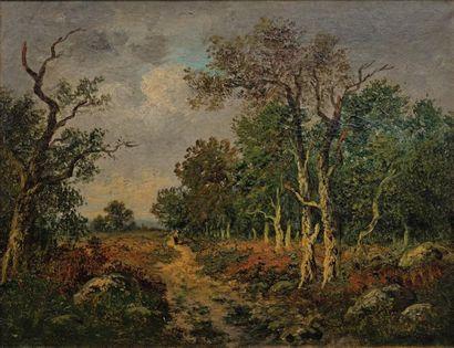 Camille MAGNUS (1850 - ?)
