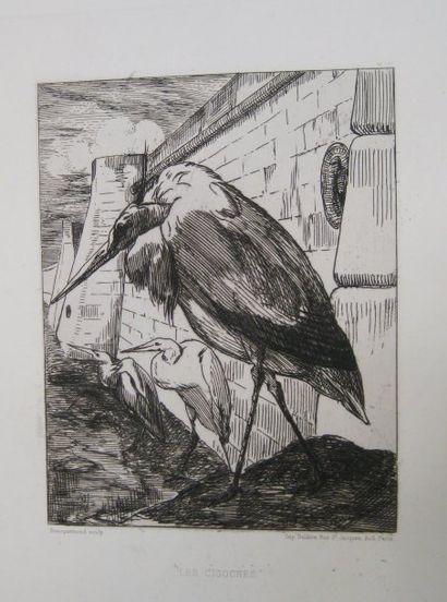 Les cigognes. 1865. Eau-forte. 244 x 185. B. 179 - I.F.F. 176 - B.-H. 271. Très...