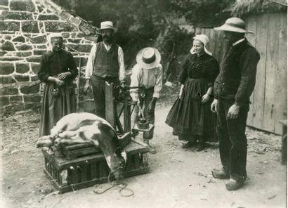 Charles DELIUS. La pesée du veau, vers 1920....