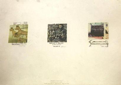 ALVIM (1963), GARICOA (XXè) et YOUNGE (1947)...