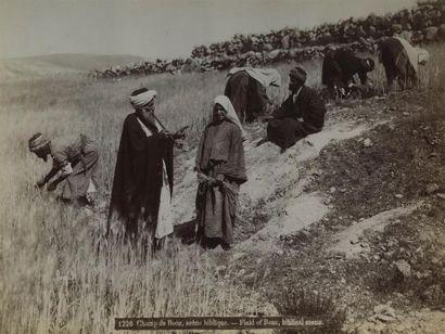Félix BONFILS (1831-1885). Palestine, vingt...