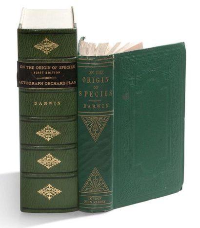 DARWIN CHARLES (1809-1882).