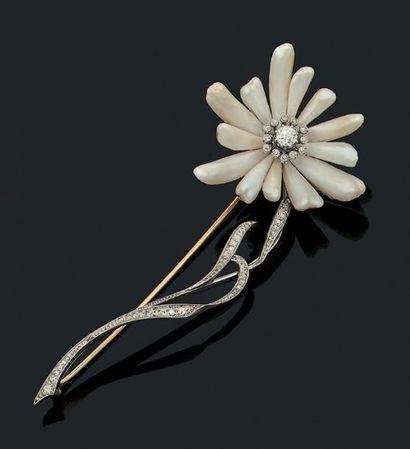 Perles du Mississipi, diamants de taille...