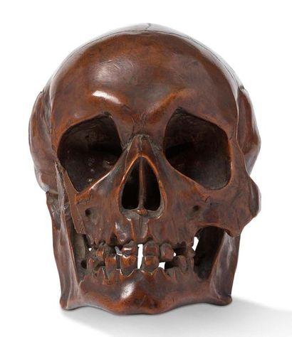 Crâne en buis sculpté Avec mâchoire inférieure....