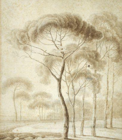 PAUL ATHANASE CHAUVIN PARIS, 1774 - 1832, ROME