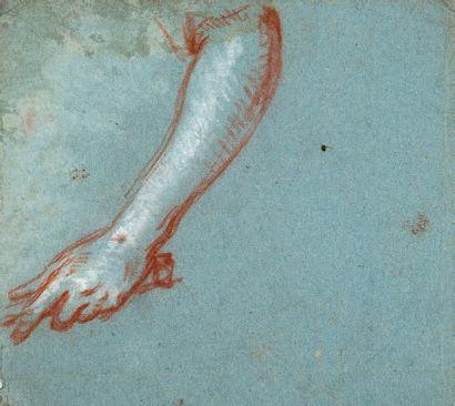 École FRANÇAISE du XVIIIe siècle 3 Studies: two of drapery; one of a man's chest...