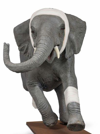 PASCAL BERNIER (né en 1960) Accident de chasse éléphanteau, 2009 Epreuve d'artiste...