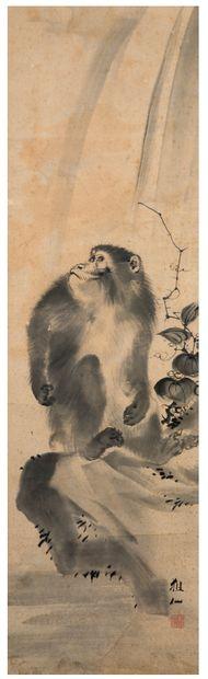 JAPON XIXE SIÈCLE D'après Mori Sosen (1747-1821)
