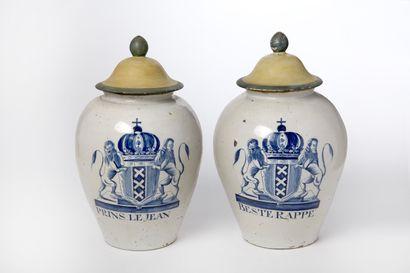 Paire de vases hollandais