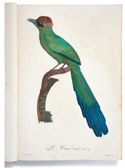 [ORNITHOLOGIE]. BARRABAND Jacques (1767-1809) d'après Recueil de 70 planches gravées...