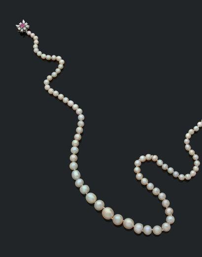 COLLIER «PERLES FINES» Chute de 76 perles...