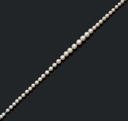 COLLIER «PERLES FINES» Chute de 111 perles...