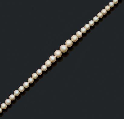 COLLIER «PERLES FINES» Chute de 81 perles...