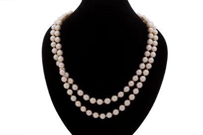 Collier perles de culture