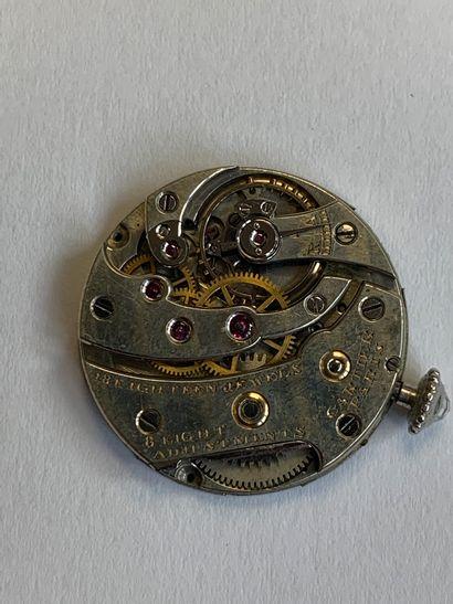 CARTIER «TORTUE» Montre de dame «Joaillerie» Platine (950), or 18k (750) et diamants...