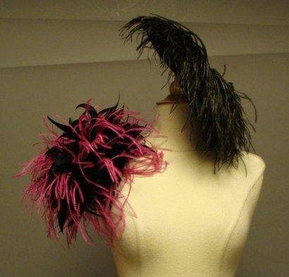 Deux chapeaux à plumes noires