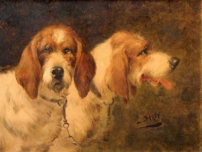 Louis DAREY (1863-1914)