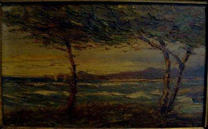 Robert DUMONT DUPARC (1866-1930) Paysage méditerranéen Huile sur bois signée en bas...