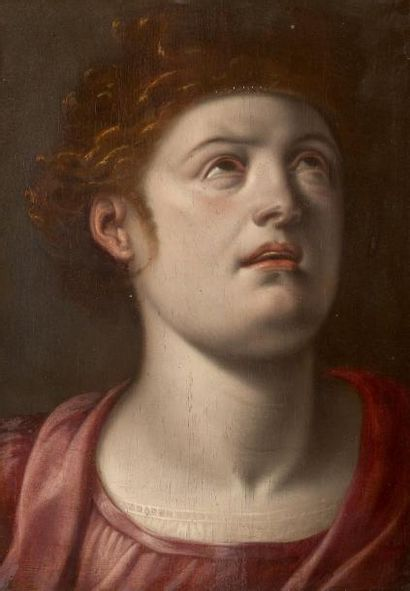 ATTRIBUÉ À FRANS FLORIS (1517-1570)