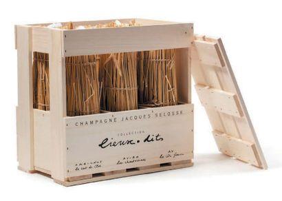 CHAMPAGNE COLLECTION «LIEUX-DITS» JACQUES SELOSSE Assortiment de 6 bouteilles (caisse...