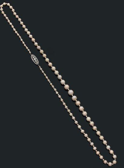Sautoir composé d'une chute de 85 perles...