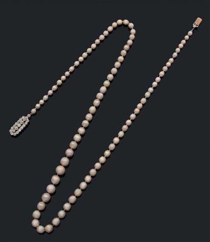 Collier composé de 86 perles fines et 1 perle...