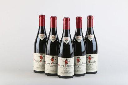5 B GEVREY-CHAMBERTIN EN MOTROT Monopole (quelques marques étiquette) - 2000 - Denis...