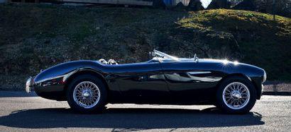 1956 AUSTIN-HEALEY 100 M BN2