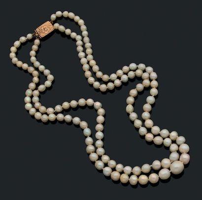 Perle fine Collier deux rangs de perles....