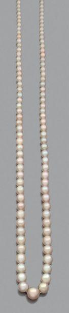 Perles fines Collier de 102 perles fines...