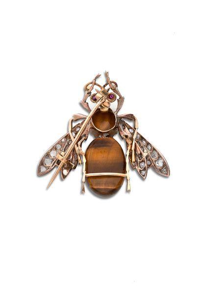Broche «insecte» Or 18k (750) oeil de tigre, diamants taillés en rose et rubis....