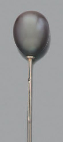 Perle fine Epingle or gris 18k (750) et perle...