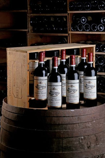 12 Blles Château Chasse-Spleen - 2005 - Moulis,...