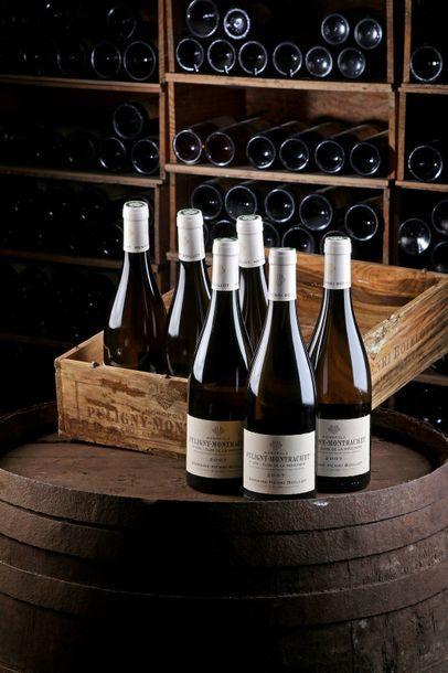 6 Blles Puligny-Montrachet 1er Cru