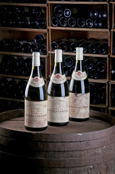 """3 Mag Beaune 1er Cru """"du Château"""" - 2005 - Domaine Bouchard Père et Fils    - état/..."""
