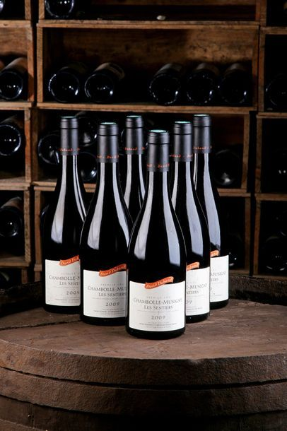 """6 Blles Chambolle-Musigny 1er cru """"Les Sentiers"""" - 2009 - Domaine David Duband  ..."""