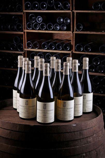 12 Blles Meursault