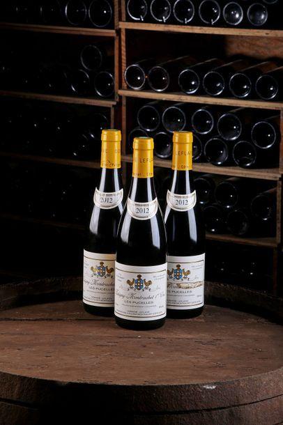 3 Blles Puligny-Montrachet 1er Cru