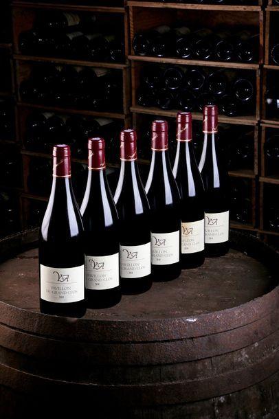 6 Blles Bourgueil