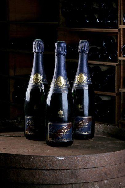 3 Blles Champagne