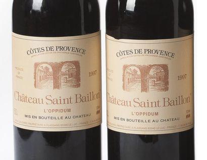 2 Magnums Côtes de Provence