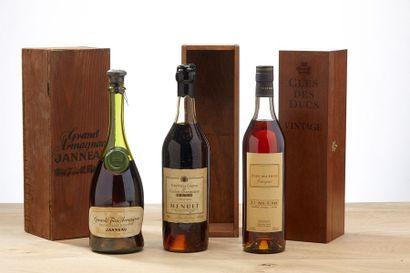[MIX] LOT 3 blles Armagnac et Cognac:    -...