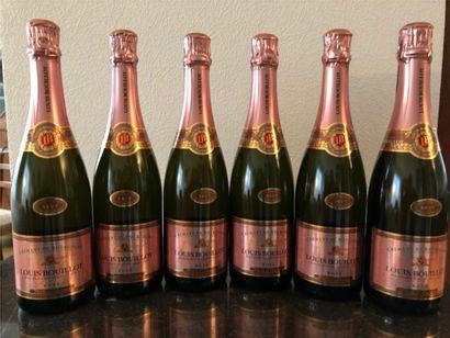 Domaine Louis BOUILLOT  6 bouteilles Cremant...