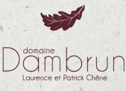 Domaine DAMBRUN –Patrick CHENE– Côte du Ventoux (84)  3 Magnums rouge 2016