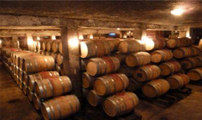 Visite et dégustation des vins du domaine  + 12 bouteilles du domaine  + dîner,...
